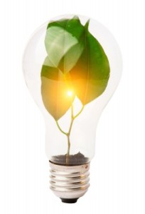 plant in a light bulb 2